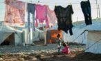 Во Владикавказ доставили вывезенных из Сирии детей