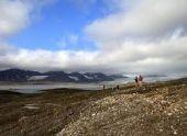 Программу «Дальневосточный гектар» планируют применять и в Арктике