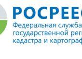 Росреестр: мэр Краснодара неправ, земля под «Сафари парком» стоит 63 тысячи, а не 1,3 млрд рублей