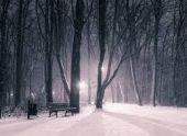 В Гидрометцентре рассказали, когда наступит климатическая зима
