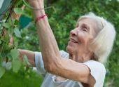 В России пенсионерам повысили доплату за возраст