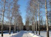 Россиянам рассказали о погоде зимой
