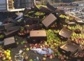 Во Владикавказе уничтожили почти 2,5 тонны польских яблок