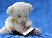 Во Владикавказе вышла в свет книга «Осетинские волшебные сказки»