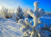 В Ханты-Мансийске температура побила рекорд 1912 года
