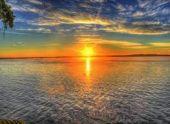 Солнечный свет уничтожает коронавирус в 8 раз быстрей, чем считалось раньше